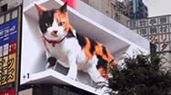 新宿火车站东口站前广场正面3D电子屏(东京3D猫)